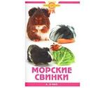 Книга Моркие Свинки О Нил А.