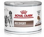 Лечебные Консервы Royal Canin (Роял Канин) Veterinary Diet Feline/Canine Recovery Для Кошек и Собак При Анорексии и Выздоровлении 195г