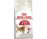 Сухой Корм Royal Canin (Роял Канин) Feline Health Nutrition Fit 32 Для Домашних Кошек с Нормальной Активностью 400г