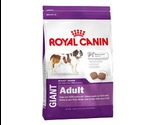 Сухой Корм Royal Canin (Роял Канин) Size Health Nutrition GIANT Adult Для Собак Гигантских Пород 4кг