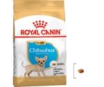 Сухой Корм Royal Canin (Роял Канин) Breed Health Nutrition Chihuahua Puppy Для Щенков Породы Чихуахуа от 2 до 8 Месяцев 500г
