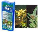 Препарат Против Водорослей JBL Algol 100мл Jbl2302259
