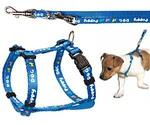 Шлейка Для Собак + Поводок Trixie (Трикси) Комплект 23-34см/8мм 1,3см 2м Нейлон Синий 15342