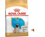 Сухой Корм Royal Canin (Роял Канин) Breed Health Nutrition Pug Puppy Для Щенков Породы Мопс 1,5кг