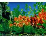 Фон Для Аквариума Triton (Тритон) Красная Бабочка 40см 1м 160040