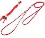 Ринговка Для Собак Hello Pet (Хелло Пет) с Прищепкой 0,5*115см Красная Peq-05r