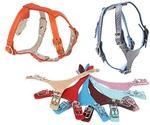 Шлейка Для Собак Dogger (Доггер) 31-36см*1см Цветная Ш100300ц