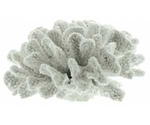Коралл Для Аквариума Dezzie (Деззи) Пластиковое 20*19*9см 5611179