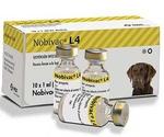 Нобивак L4 Вакцина Для Собак (1*10)