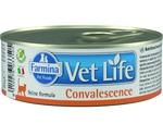 Лечебные Консервы Farmina (Фармина) Для Кошек в Период Выздоровления Vet Life Natural Diet Cat Convalescence 85г